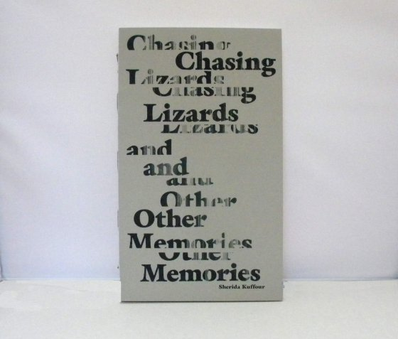 changing lizards an other memories