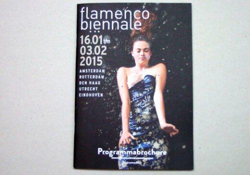flamenco biennale